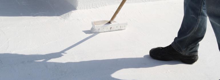 brush painting roof